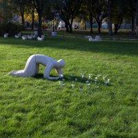 Всходы каменных цветов :: Евгений Никифоров