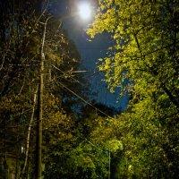 Ночная улица (Хорошево-Мневники) :: Сергей Фомичев