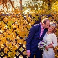 Свадьба осенью :: Лариса Булавка