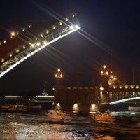 Разведение дворцового моста :: Людмила Добрецкая