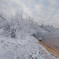 Утро на берегу. :: Алексей Хаустов