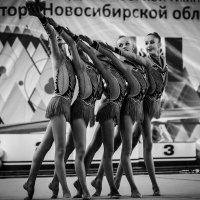 Кубок губернатора Новосибирской области 5 :: Константин Филоненко
