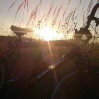 Велопрогулка, закат. :: Игорь Бойко