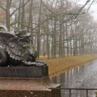 Страж осеннего парка :: Елизавета Вавилова