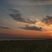 Солнце встаёт. :: Наталья Юрова