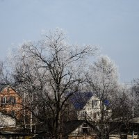 Зима стучится в двери 3 :: Наталья Макарова
