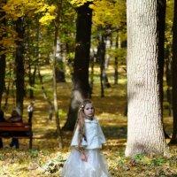 Лесная принцеса :: Антонина Ягущина