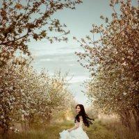 Сбежавшая невеста :: Татьяна Шаламанова