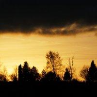Природа на закате :: Ольга Варсеева
