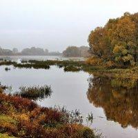 Отражая октября раздумья.... :: Лесо-Вед (Баранов)