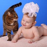 Кото-Внучке Веронике исполнилось ПОЛгода! Поздравляю! :-) :: Детский и семейный фотограф Владимир Кот