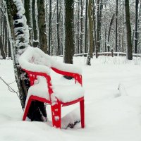 Есть свободное место! :: Геннадий Храмцов
