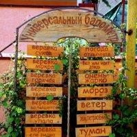 Местный барометр :: Ирина Фирсова