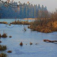 Пейзаж :: Александр Лукин