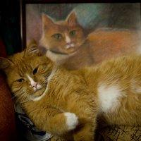ОблоКОТившийся на свой портрет :: Tetyana Yurchenko