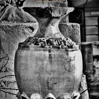 """ваза :: PHOTO COMPOSITION """" FOC """""""