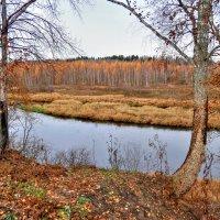 Осенние берега :: Андрей Куприянов