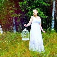 свадьба Евгения и Светланы :: Наталья Мерзликина