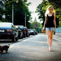 Летняя прогулка :: ferro
