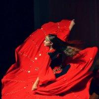 жизнь в танце :: Андрей Герасимов