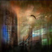 Еще как птица могу подняться В крутое небо я иногда, И сердцу снятся, как в детстве снятся, Другие с :: Лариса Шамбраева