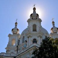 фрагмент Смольного собора :: Галина (Stela) Кожемяченко