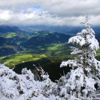 И снег и солнце. :: Leonid Volodko