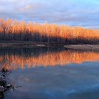 Дни поздней осени бранят обыкновенно, но мне они милы... :: Евгений Юрков