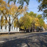 Центральная улица моего города. Октябрь :: Алёна Чалова