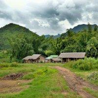 Деревня в джунглях :: Владимир Анакин