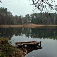 Ноябрьский пейзаж :: Kliwo