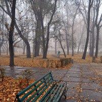 Зачем же ты ушла в туман..? :: Александр Бойко