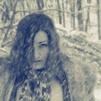 Зима :: sergey shishkov