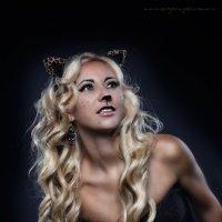 Кошка :: Евгений Петров