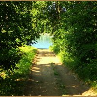 Зеленый тоннель к реке. :: Владимир Валов