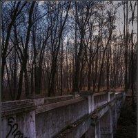 Старый мост. :: Владимир Елкин