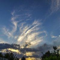 Закатное небо :: Дмитрий Потапкин