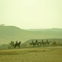 обитаемая пустыня :: Алёна ChevyCherry
