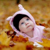 Осеннее настроение :: ЕЛЕНА МАКОВЕЦ