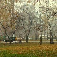 ноябрь, :: Ирина ***