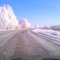 шуба от деда мороза-2 :: Александр Таннагашев