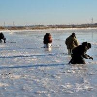 Рыболовство их хобби :: Николай Терентьев