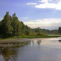 Речка впадает в озеро :: Наталья