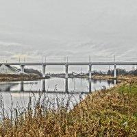 """Олимпийский"" мост через реку Луга.. :: Михаил Жуковский"