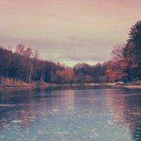 Осень2014. :: александр мак mak