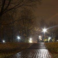 Осенняя ночь :: Екатерина Маринина