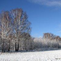 Зимы начало :: Татьяна Ким