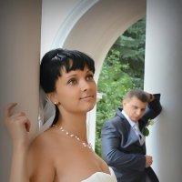 Свадьба :: Владимир Честнов