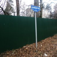 А за зелёным забором стоит - абрикосовый дом... :: Ольга Кривых