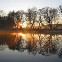Солнечное утро на реке :: Леонид Корейба